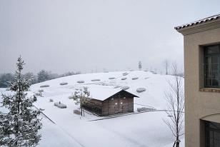 090126_snow2.JPG