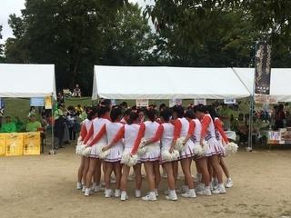 ゆりのき.JPG