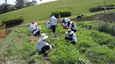 園芸入門2011 029.JPG