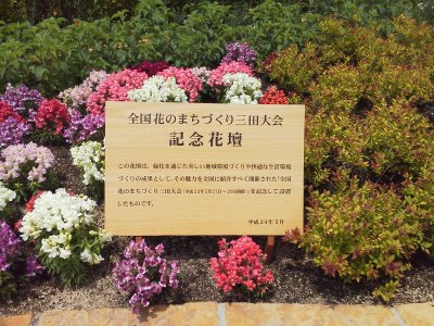 P1010016.jpg